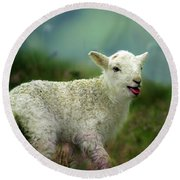 Swet Little Lamb Round Beach Towel