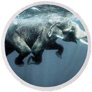 Swimming Elephant Round Beach Towel
