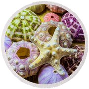 Syarfish And Sea Urchins Round Beach Towel