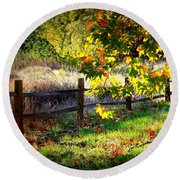 Sycamore Grove Series 11 Round Beach Towel