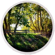Sycamore Grove Series 12 Round Beach Towel