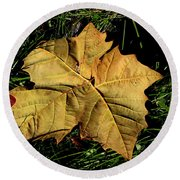 Sycamore Leaf Round Beach Towel