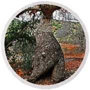 Sycamore Tree And Fall Leaves Round Beach Towel