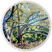 Sycamore Trees At The Zoo Round Beach Towel