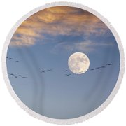 Symphony In The Sky Round Beach Towel
