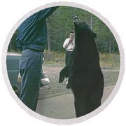 T-203503 Bear Feeding In The Old Days Round Beach Towel