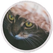 Tabby Cat Looking From Beneath A Blanket  Round Beach Towel