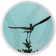 Take Off Round Beach Towel