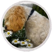Taking Time To Smell The Flowers Round Beach Towel