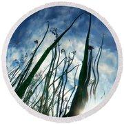 Talking Reeds Round Beach Towel
