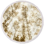Tall Aspens Round Beach Towel