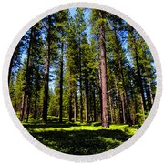 Tall Forest Round Beach Towel