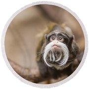 Tamarin Monkey 1 Round Beach Towel