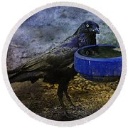 Taming Of The Crow Round Beach Towel