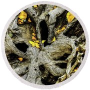 Tangled Roots Round Beach Towel