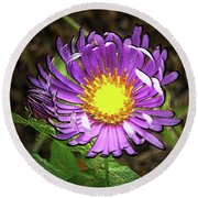 Tansyleaf Aster Round Beach Towel