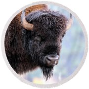Tatanka Portrait Round Beach Towel
