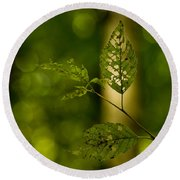 Tattered Leaves Round Beach Towel