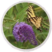 Tattered Tiger Swallowtail Butterfly          August         Indiana Round Beach Towel