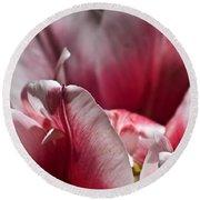 Tattered Tulip Petals Round Beach Towel