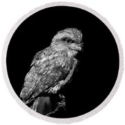 Tawny Frogmouth In Black And White Round Beach Towel