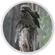Tawny Frogmouth With It's Eyes Closed And Wing Extended Round Beach Towel