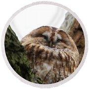 Tawny Owl Round Beach Towel
