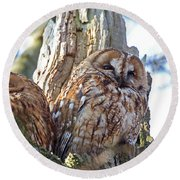 Tawny Owls Round Beach Towel