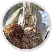 Tawny Owls In Love Round Beach Towel