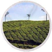 Tea Planation In Kerala - India Round Beach Towel