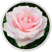 Tea Rose In Pink Round Beach Towel