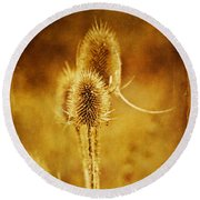 Teasel Group Round Beach Towel
