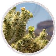 Teddy Bear Cholla Cactus With Flower Round Beach Towel