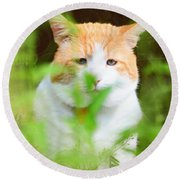 Teddy In The Garden Round Beach Towel