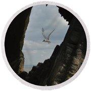 Tern Through The Gap Round Beach Towel