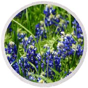 Texas Bluebonnets 002 Round Beach Towel