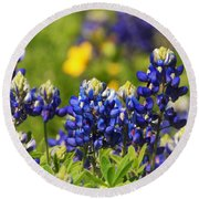 Texas Bluebonnets 006 Round Beach Towel