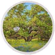 Texas Bluebonnets Under A Giant Oak Tree Round Beach Towel