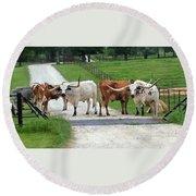 Texas Cattle Guard Round Beach Towel
