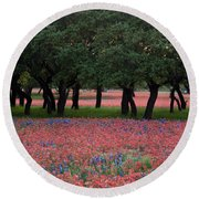 Texas Live Oaks Surrounded By A Field Of Indian Paintbrush And Bluebonnets Round Beach Towel