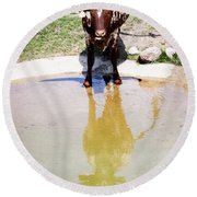 Texas Longhorn Round Beach Towel
