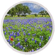 Texas Spring  Round Beach Towel