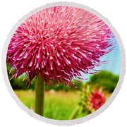 Texas Thistle 003 Round Beach Towel