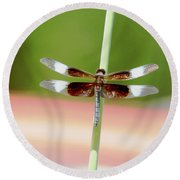 Texas Widow Skimmer - 10 Digitalart Round Beach Towel