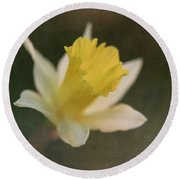 Textured Daffodil Round Beach Towel