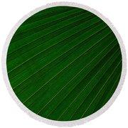 Texturized Palm Leaf Round Beach Towel
