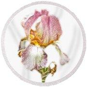 Thank You Greeting Items - Bearded Iris Round Beach Towel