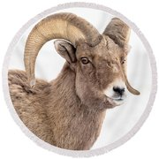 That Handsome Ram Round Beach Towel