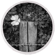 The Allotment Project - Dog Rose Round Beach Towel