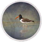 The American Pied Oystercatcher By Darrell Hutto Round Beach Towel